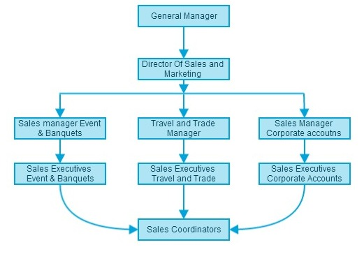 marketing organization structure